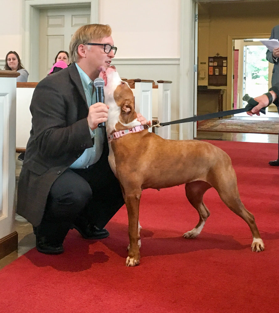 Photo of Billie Jean, a dog at Blessing of the Animals, licking Rev. Tim Dalton's face